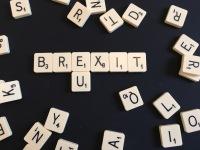 LiamFitzpatrick-Brexit-PartTimeHackFullTimeFlack